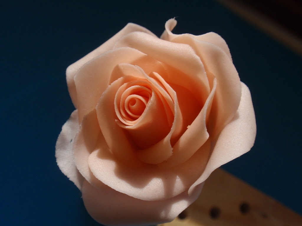 Making a full sugar flower rose
