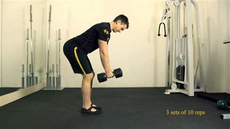 bent  dumbbell row youtube