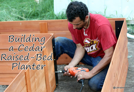 Building a Cedar Raised-Bed Planter – Backyard Botanical Gardening System Review