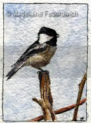 Winter Song Chickadee ACEO