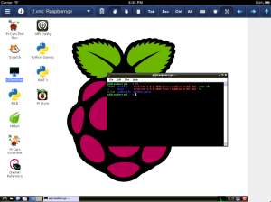ipad_vnc_linux
