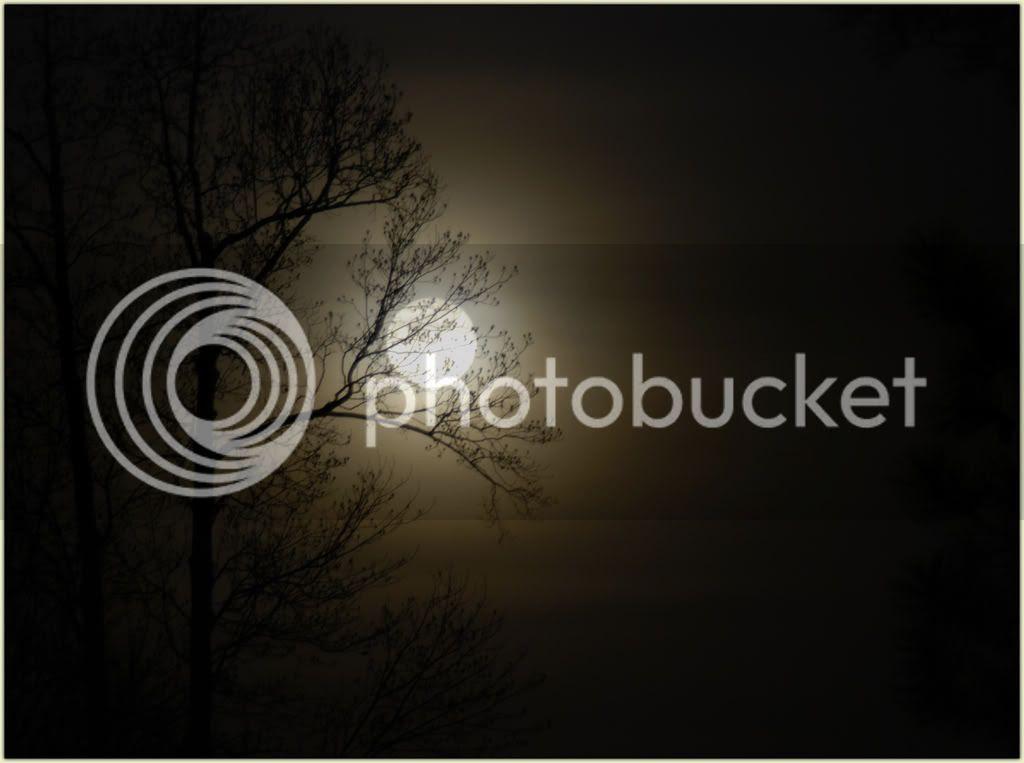 Full Moon Too