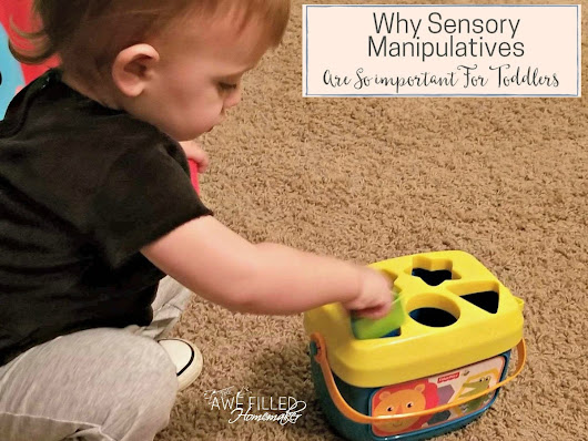 Why Sensory Manipulatives Are So Important For Toddlers