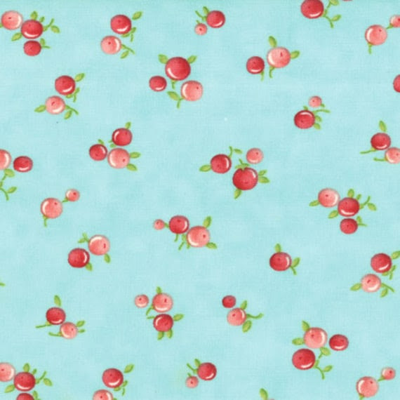 Ruby Flannel - Quirky in Aqua by Bonnie and Camille for Moda Fabrics No 55036 12F