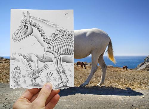5243716906 e89147e300 in Incredibly Creative Pencil Drawings vs Photography