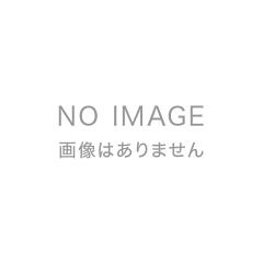 【送料無料】戦国の城