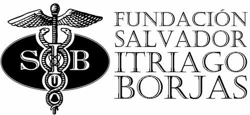 Logo Fundacion SIB