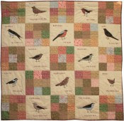 Image result for janet clare small brown british birds