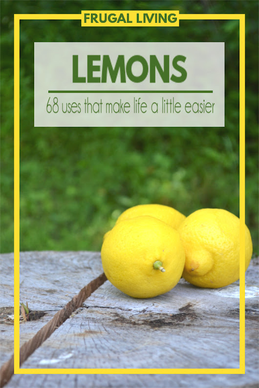 68 Household Use for Lemons | Fluster Buster