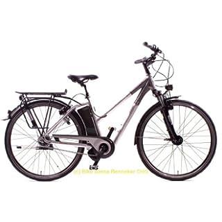 Elektrofahrräder: April 2013