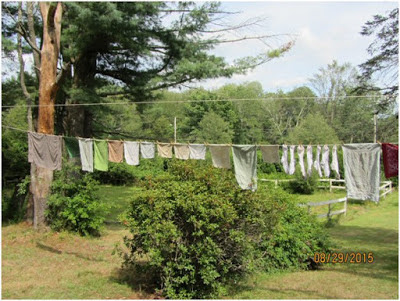 Featured on the Homestead Blog Hop - Finally a Clothesline