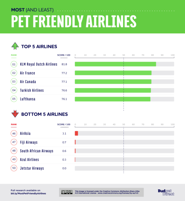 Pet-friendly Airlines Around the World