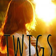 Twigs by Alison Ashley Formento Review | Emily's Novel Adventures