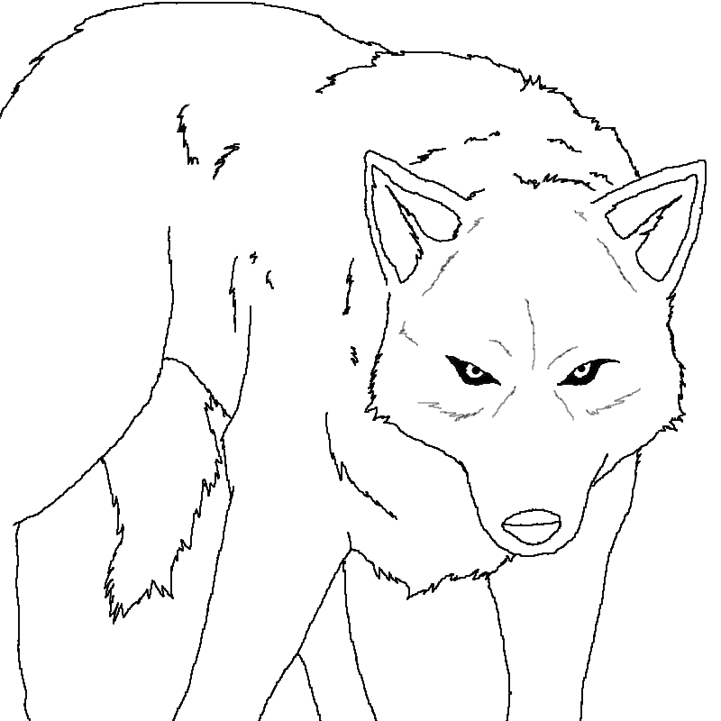 Alpha Wolf Coloring Coloring Pages