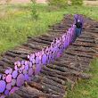 Wake, A Pathway of Brightly Painted Cut Logs by Michael McGillis