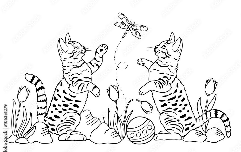 katzen malvorlagen xxl
