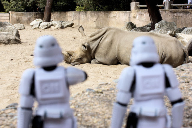 Stormtroopers and rhino