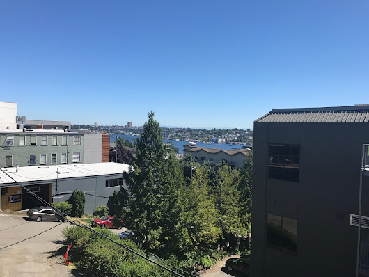 Stunning South Lake Union Condo For Sale