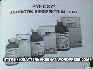 pylobact a rossz leheletből)