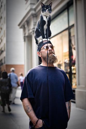 Cat Hat por Breslow