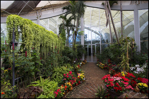 Indoor Winter Garden with Air Conditioning