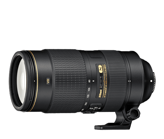 Nikon 80-400, One Great Lens