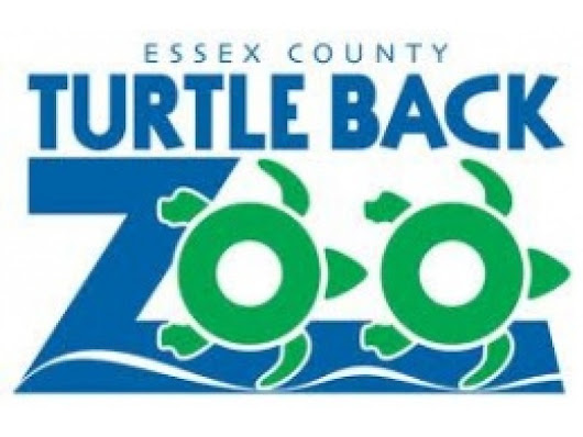 Turtle Back Zoo In West Orange Now Recruiting Docent Volunteers