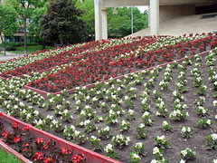 UW grounds