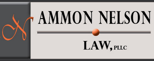Ammon Nelson Law, PLLC Celebrates One Year Anniversary!