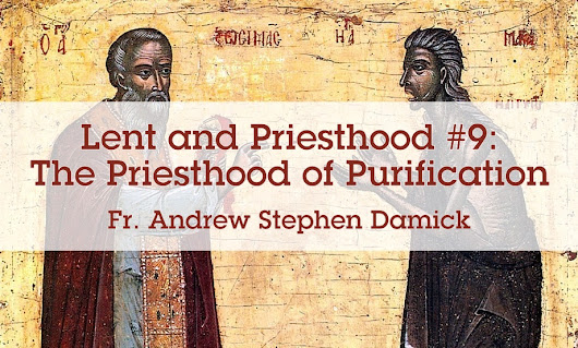 Lent and Priesthood #9: The Priesthood of Purification — Roads from Emmaus