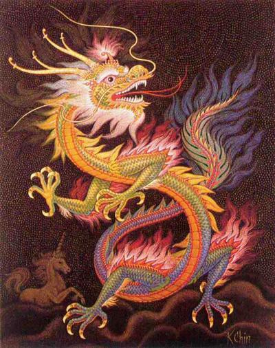 Tipos De Dragon