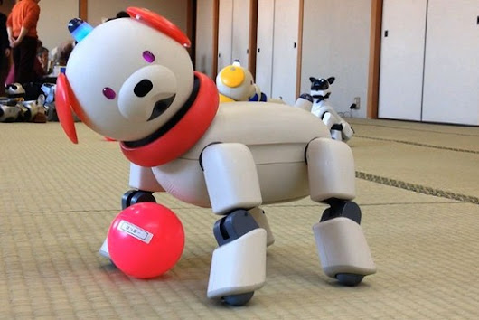 In Japan, Dog Owners Feel Abandoned as Sony Stops Supporting 'Aibo' - WSJ