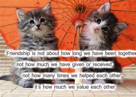How Much We Value Each Other. Free Friendship eCards