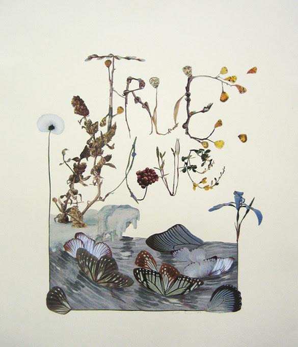 True Love - Alexis Anne Mackenzie