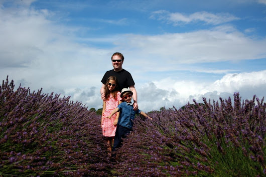 Running from Bees at Mayfield Lavender Farm - Californian Mum in London