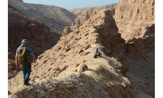 Earliest records of three plant groups uncovered in the Permian of Jordan