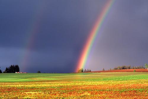 desktop wallpaper rainbow. Desktop Wallpaper: Rainbow Nature Wallpaper