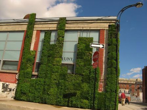 July | 2008 | Environmentally Conscious Real Estate of Cincinnati