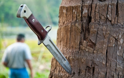 How To Choose The Best Survival Knife