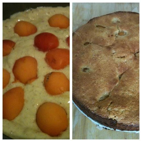 Apricot Almond Cake by Ayala Moriel