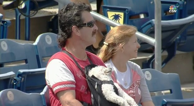 Yesterday, two Phillies fans brought their pupper to a spring training game.