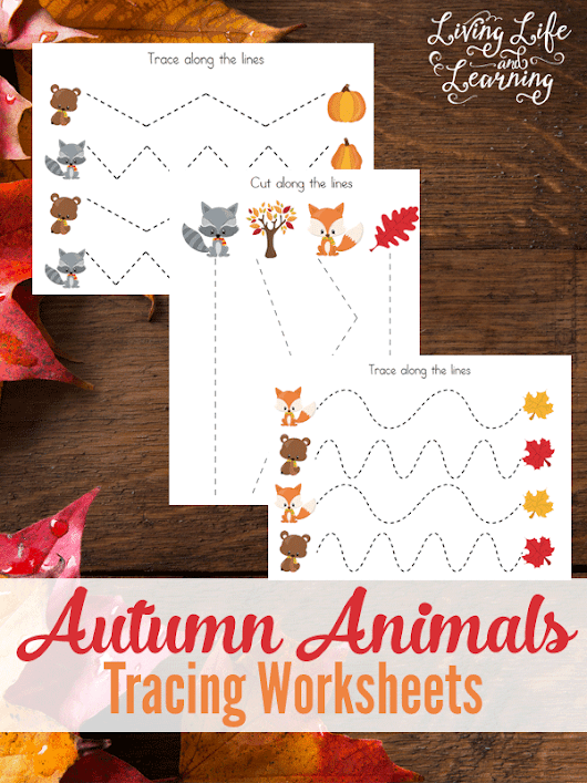 Autumn Animals Tracing Worksheets