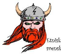 Viking - etnisk svensk