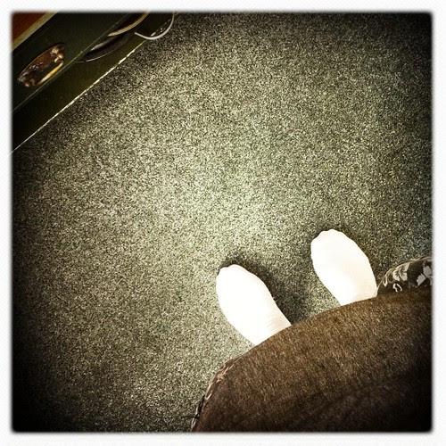 carpet :: teppe