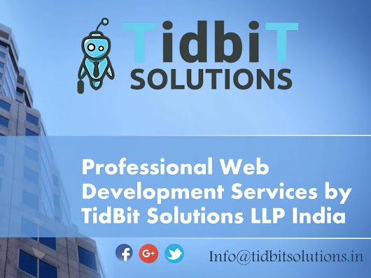 Professional Web Development Company Services in India - TidbiT Solutionss