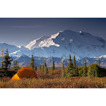 Scenic View Of Mt. Mckinley In The Morning With Tent In The Foreground, Denali National Park, Interior Alaska, Autumn Poster Print (34 x 22)