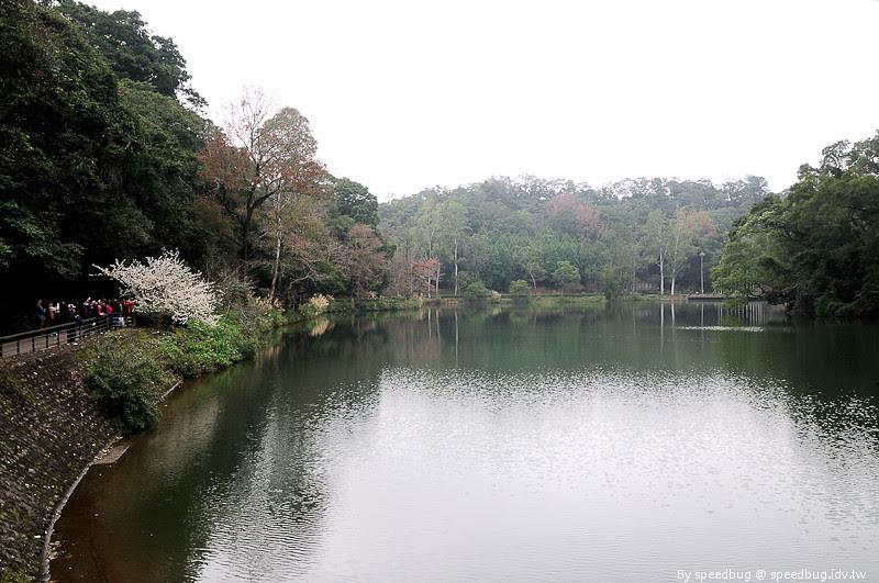 後慈湖 (27)