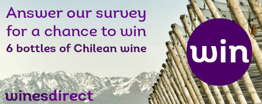 South American Wines Survey - Wines Direct