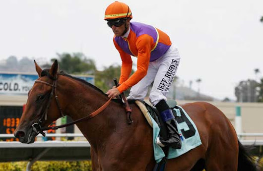 Beholder Continues Her Recovery - Horse Racing Nation