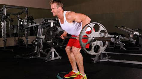 exercises   muscle group